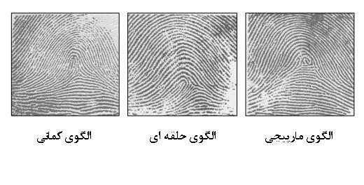 سه نوع الگوی اصلی