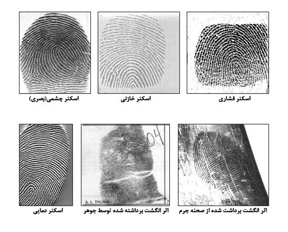 سنسور های تشخیص اثر انگشت